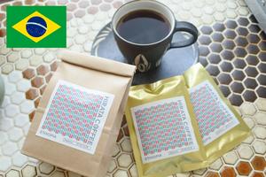 ブラジル ダテーラ農園 サンライズ(RA認証)
