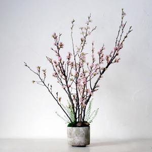 自宅で!桜のお花見キット