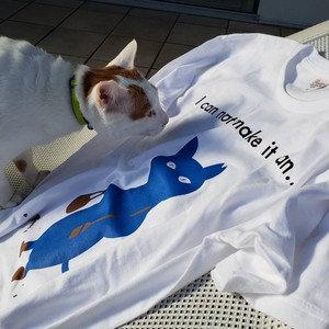 青い猫Tシャツ
