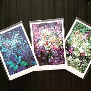 ポストカード【3色セット】吉清花絵 × kokoro-Ne 「 Microcosmos」