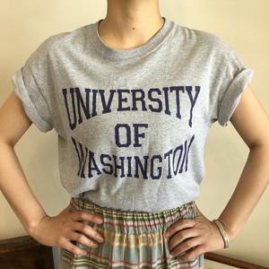 カレッジTシャツ Washington