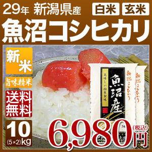 新潟県 魚沼産 コシヒカリ 10kg(5kg×2)(平成29年産 白米/玄米)