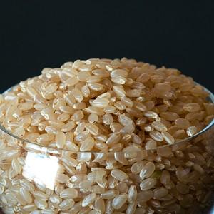 門崎 めだか米 2kg(特別栽培米)玄米