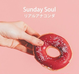 "8cm CD-R Single ""Sunday Soul"""