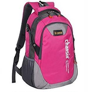 軽量 大容量 の バック パック 登山 アウトドア 旅行 用 リュック サック / 通勤 / 通学 アルパイン バッグ (ピンク)