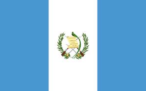 グァテマラ アンティグア アゾテア農園 中煎り 100㌘