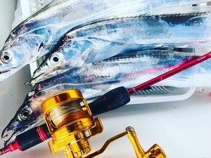 【取り寄せ】タチウオ、近海ジギングなど RED JM Power Spell Special Rod #2-63BXUL ( Bait casting rod) #Red / PE 1.2~3.0 / Jig 100~260g, 60 degree-16kg, 90 degree-7kg
