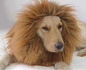 大変身!! 犬 用 ライオン コスプレ グッズ かわいい おしゃれ ペット 着ぐるみ コスチューム かつら haab001