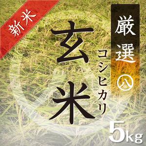 【新米】厳選コシヒカリ(玄米 5kg)令和元年産