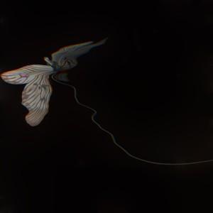 毛利悠子「Butterfly, Pleated (small)」#1|限定数 3