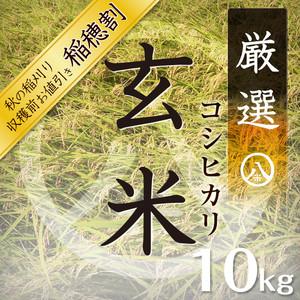 【新米】厳選コシヒカリ(玄米 10kg)令和元年産