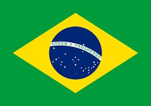 ブラジル ハチドリ 中煎り深 100㌘