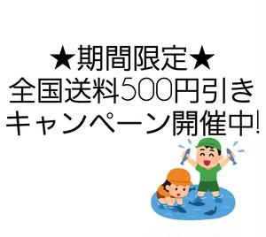 ☆男鹿市通信販売促進事業☆送料500円引き☆