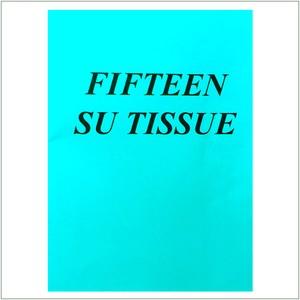 Fifteen Su Tissue / Rosa Vertov
