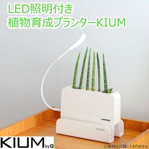 LED照明付植物育成プランター KIUM