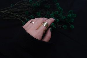 only  ring (甲冑)