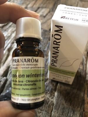 シトロネラ<天然植物100%>精油PRANAROM社 10ml