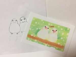 文鳥 型紙&描き方動画アクセス権