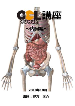OCLストレッチ講座【内臓編】1枚組