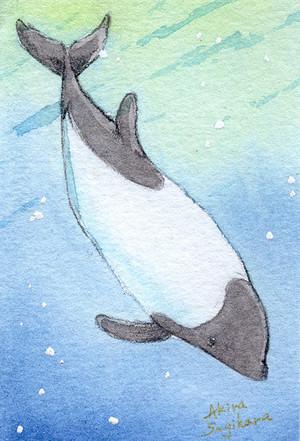 【ミニ原画】海の仲間たち⑤