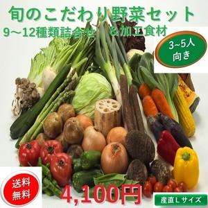 定期品 新鮮旬の野菜&加工食材:セット【こだわり・Lサイズ】【9~12種類詰合わせセット】3~5人向け 国内産【送料無料】【産地直送】