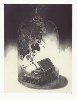 武田史子「温室の図書館」エッチング.アクアチント / イメージサイズ44.5×34.5cm 2017年制作 30ed
