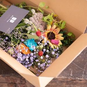 ドライフラワーになりやすい生花のお楽しみBOX(鮮やかに着色したお花付き) greenpiece × RIN