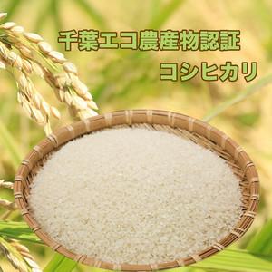 自家製コシヒカリ(精米)5kg