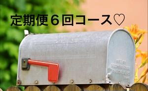 【定期便6回コース♡】ペルメナハーブシャンプー