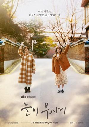 韓国ドラマ【眩しくて】Blu-ray版 全12話