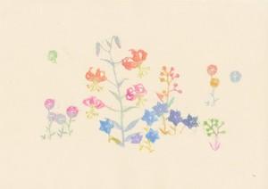 沙羅「小さな庭」 Small Garden シリーズ(L−22)