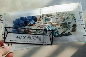 残1点【blue】dried & preserved flower pac