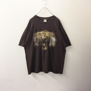 anvil National Park Tシャツ size XL メンズ 古着