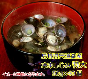 冷凍しじみ  特大  50g入り   40個 (税込・送料込)
