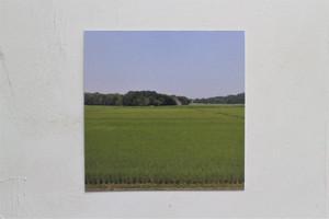 【ZINE】image picture /折田千秋