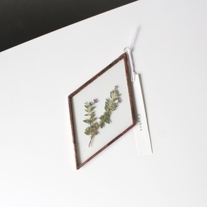 クフェア / A piece of nature 菱形 大