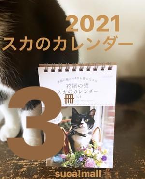 《3冊》【スカのカレンダー♪】