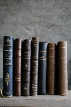 フランス洋書  Livres de France / an-14007