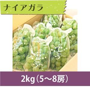 【ぶどう】ナイアガラ 2kg(5〜8房)