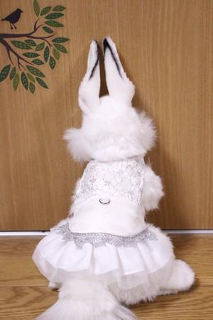 【A様オーダー】ウエディングハーネス(ドレス)