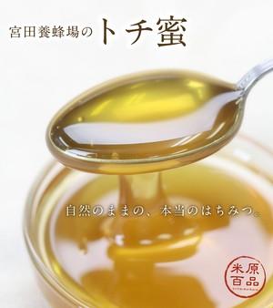 国産 平成30年度 宮田養蜂場のトチ蜜 150g