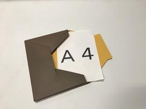メール便対応型BOX  『カートンフィーノ』からしxダークブラウン(1梱包 20枚入り)