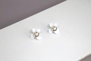 PearlSmile in flower H