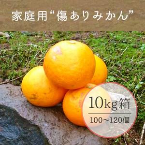 家庭用♪ 傷ありみかん【10kg】 送料別