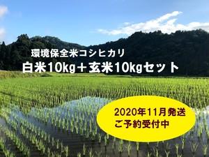 環境保全米コシ白米10kg+玄米10kgセット