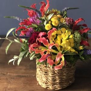 季節の花カゴ M (ホグラバスケット)