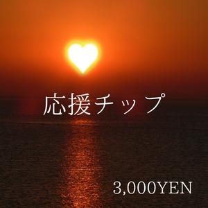 応援チップC 【3,000円】