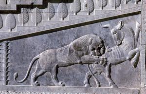 ペルセポリス遺跡 雄牛を襲う 獅子の浮き彫り