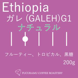 エチオピア ガレ(GALEH) G1 ナチュラル【ハイロースト】200g