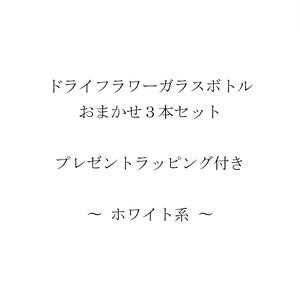 No.DFGBOSRP01(ホワイト系)